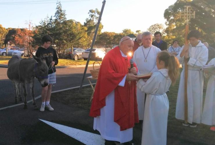Fr Bert Palm Sunday 2016