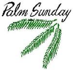 palmsun2sml