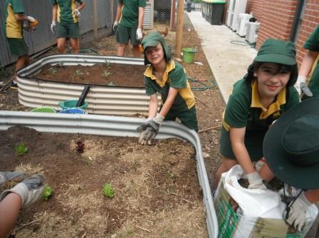 OLMC Gardeners